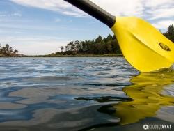 Yellow Paddle