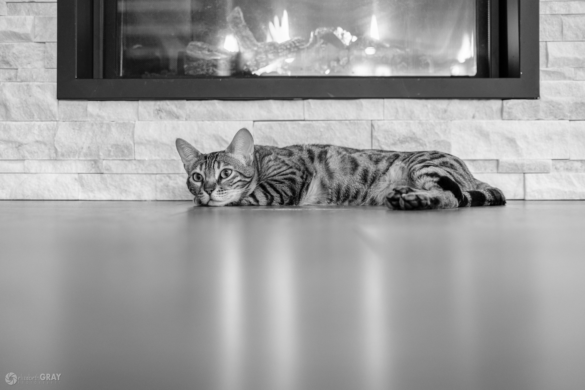 Fireplace Day Dreams