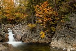 Fall Water Fall