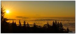 Golden Foggy Vancouver Sunrise