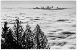 Foggy Vancouver Sunrise
