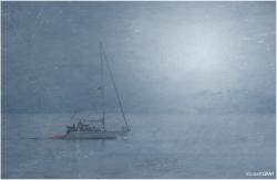 Foggy Morning Sailboat
