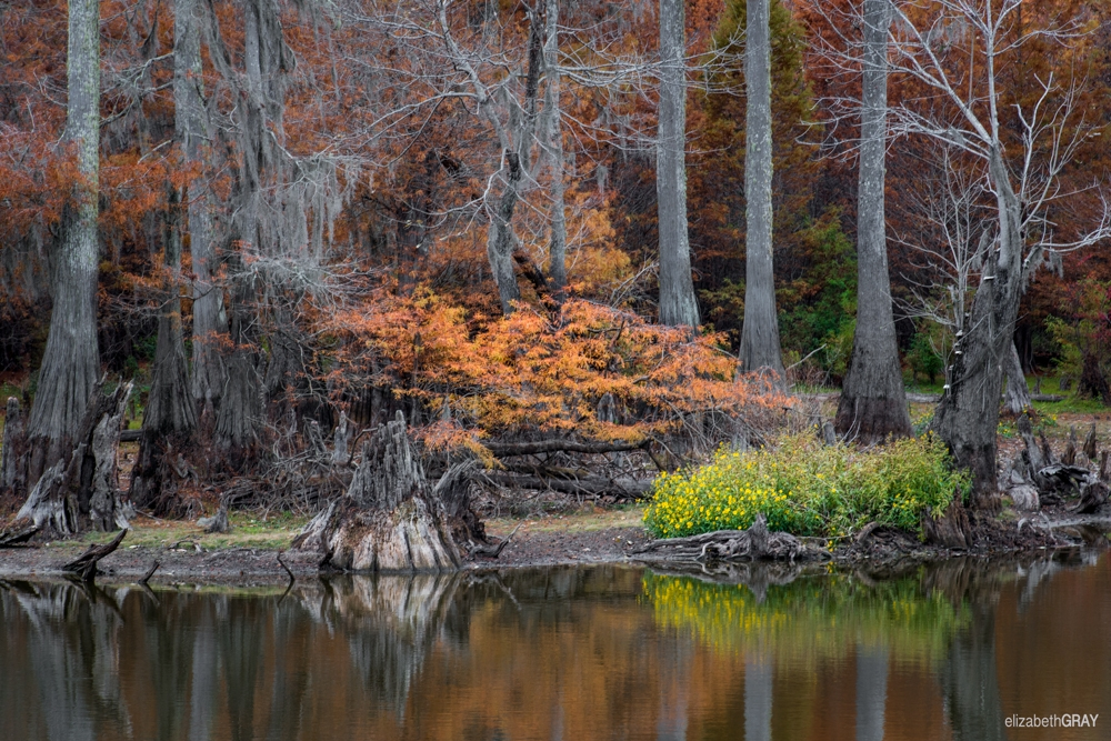 Fall in Southern Mississippi